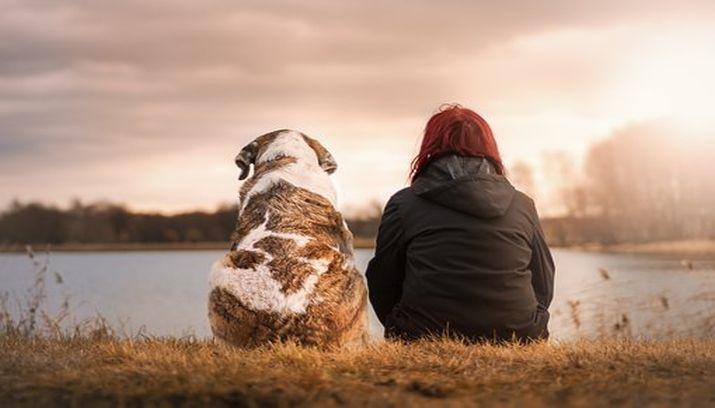 eenzaamheid, eenzaam, oplossing, contact, connectie, hond, knuffel vrouw aluhti